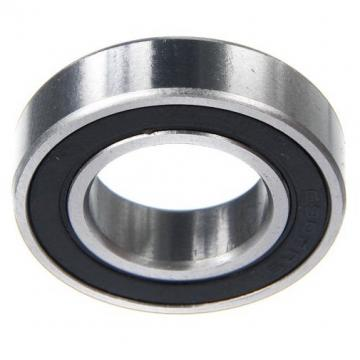 Made in China Hybrid Ceramic Bearing 6902 2RS Ceramic Bearing