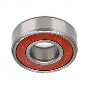 Deep Groove Ball Bearing 6204DDU NSK bearing