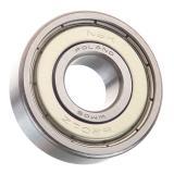 Bearing Original NSK Deep Groove Ball Bearing Auto Motor Ball Bearing (6200-ZZ 6201-ZZ 6202-ZZ 6203-ZZ 6204-ZZ 6205-ZZ)